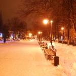 Ночной Кольцовский сквер - вид в сторону пл.Ленина фото