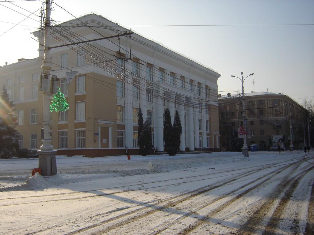 Никитинская библиотека в Воронеже фото