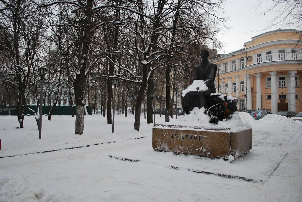 Памятник Бунину в Воронеже фото