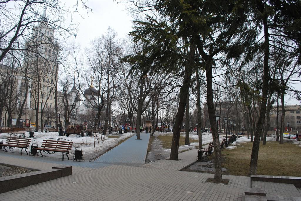 Петровский сквер в Воронеже фото