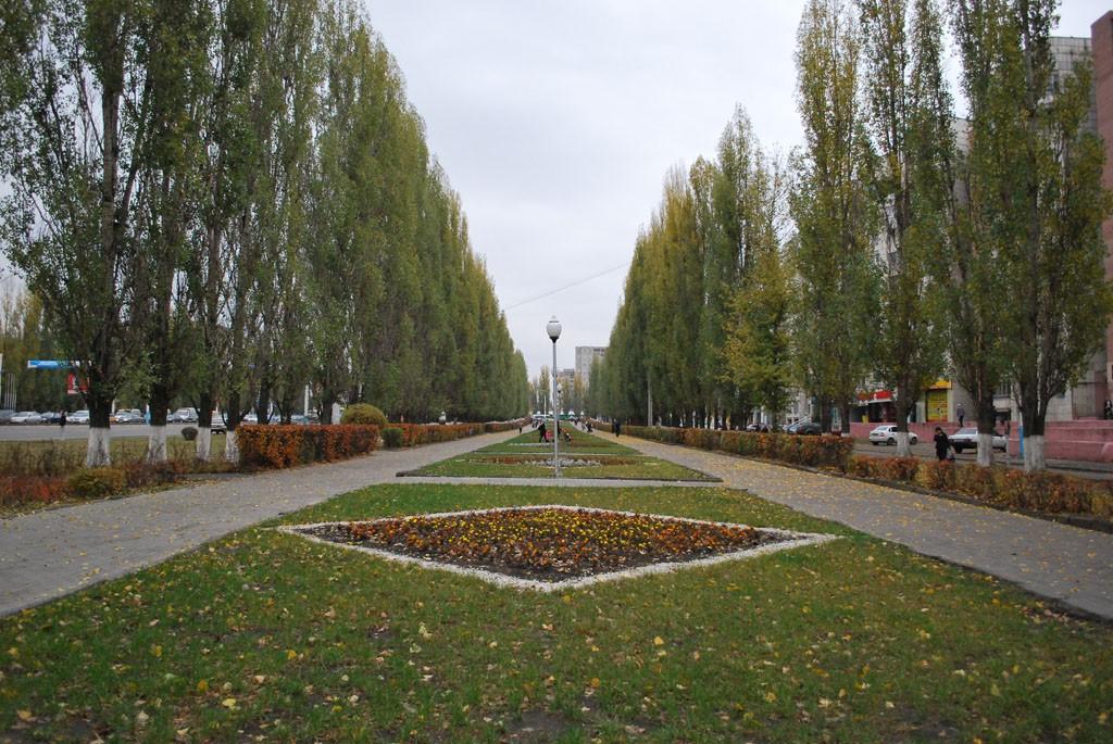 Сквер на Остужева в Воронеже фото