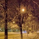 ул. Большая Дворянская в Воронеже фото