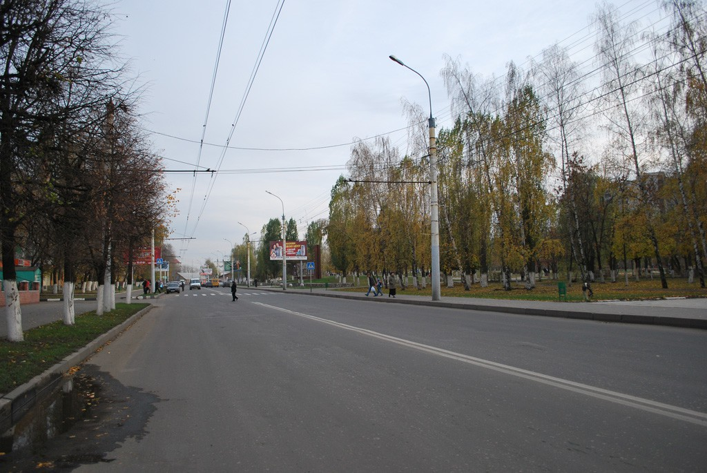 ул. Домостроителей в Воронеже фото