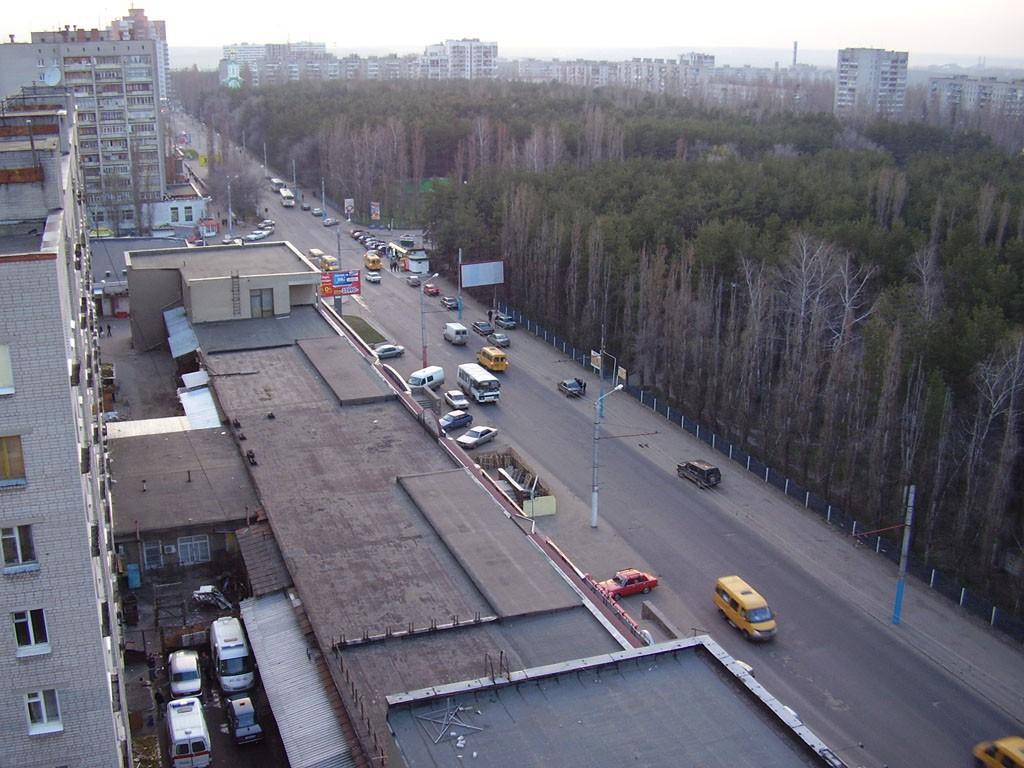 ул. Олеко Дундича в Воронеже фото